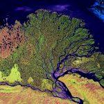 Nova discussão sobre o processamento de imagens na assessoria ambiental